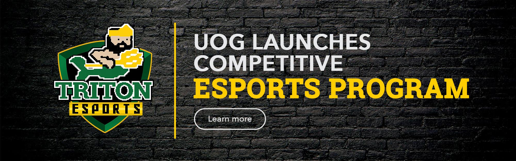 Click to visit the Triton Esports website