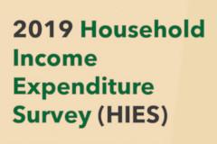HIES Survey