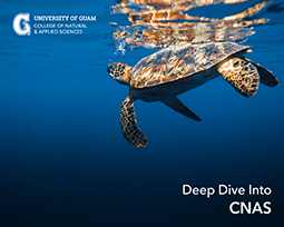 CNAS Dive deep cover