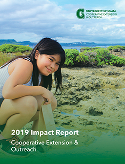 CE&O 2019 Report Cover