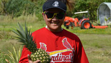 UOG agriculture students learn about pineapple propagation.
