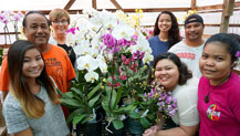 A tissue culture laboratory and nursery team at the Guam Department of Agriculture and the University of Guam's Western Pacific Tropical Research Center are accepting sickly orchids from the public and exchanging them free of charge for healthy phalaenopsis or dendrobium seedlings or mature plants. The two entities are also offering free one- to two-week courses on how to grow and propagate healthy orchids.