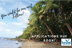 The University of Guam Sea Grant program is seeking its next graduate fellow. Applications are due Aug. 31.