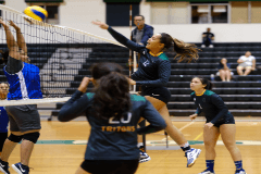 Thursday night was a struggle for the Guam Women's College Volleyball League at the UOG Calvo Field House as forfeits ruled the night.