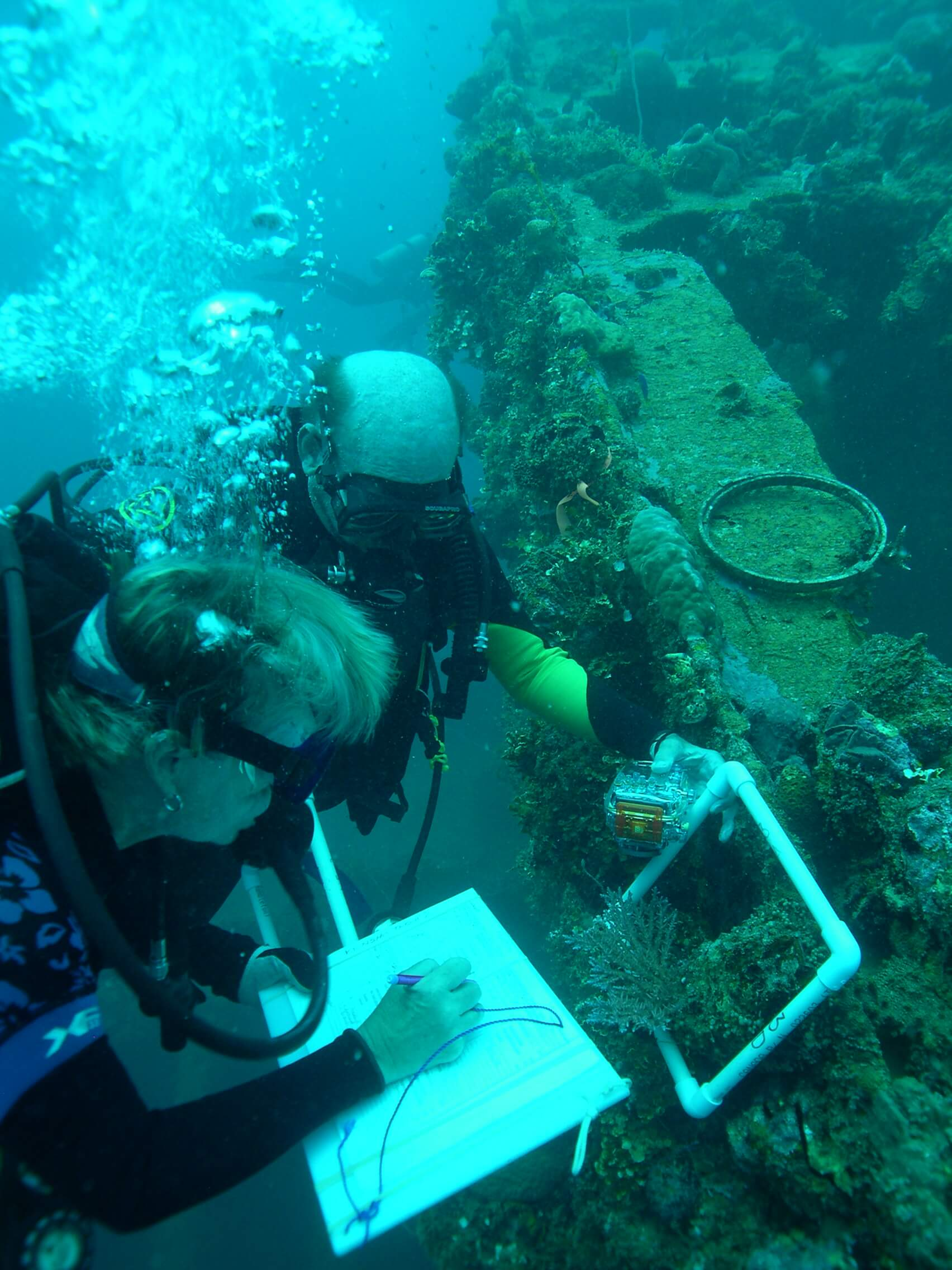 Volunteer divers recording the benthic covering on the Kiyosumi Maru shipwreck in Chuuk Lagoon.