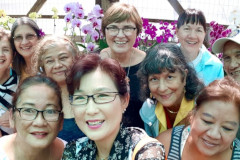 Guam Orchids and Exotic Plants Club