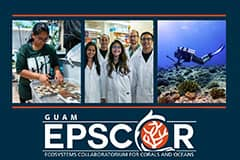Are you interested in the sustainability of coral reefs and the marine environment? Guam EPSCoR has a valuable opportunity for you.
