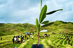 The corps members helped prep the land for 200 volunteers to plant trees in Malesso'.