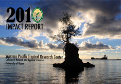 2010 Impact Report Cover