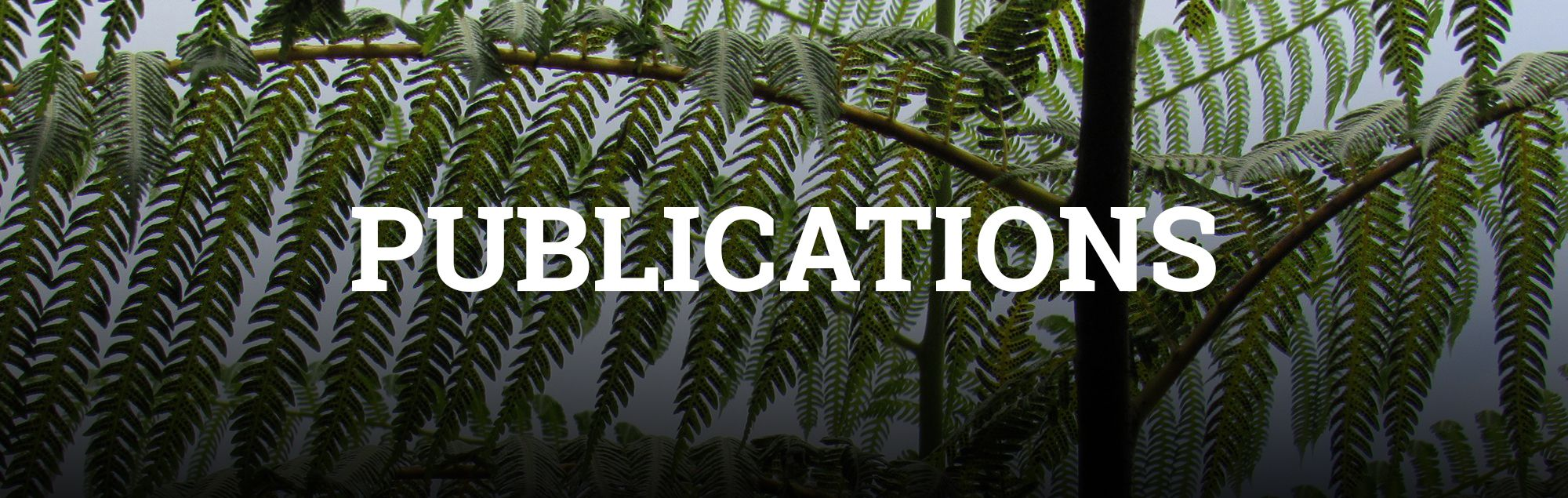 Publications Banner Image