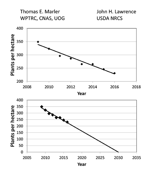 Cycas micronesica mortality trends